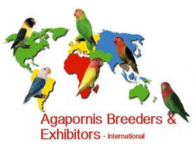 Agapornis Breeders & Exhibitors